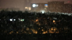 Snowing at night over a living fence of evergreen trees Stock Footage