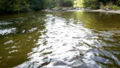 Vertical panorama from a lake in hardwood 70 Stock Footage