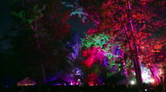 Outdoor dj rave party at night, people jumping Stock Footage
