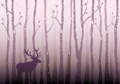 Birch tree forest, vector - stock illustration