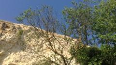 Crimea Russia Sevastopol Fiolent - Cicada , rocks , nature Stock Footage