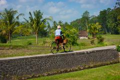 Stock Photo of Old Balinese woman cycling past rice fields on her bike