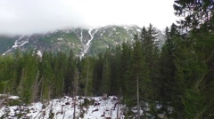 Winter landscape in overcast sky Stock Footage