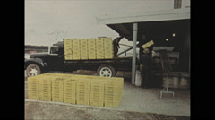 Vintage 16mm film, 1971, Wine, unloading grapes for wine Stock Footage
