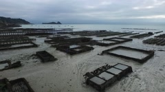 Cancale french Britain, oyster bed with drone 5 Stock Footage