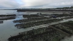 Cancale french Britain, oyster bed with drone 7 Stock Footage