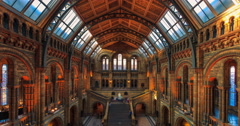 Natural History Museum, London. Stock Footage