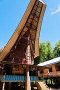 Unique and Colorful traditional House in Tana Toraja under blue sky with buffalo - stock photo