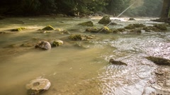 Ammonites in river Stock Footage