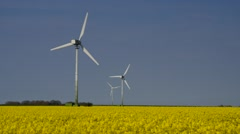 Stock Video Footage of Wind turbines and rape field