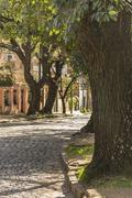 Cobblestone Street in San Isidro Buenos Aires - stock photo
