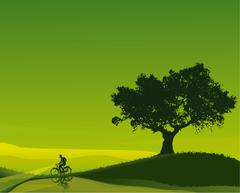 Stock Illustration of Cyclist in a green dawn