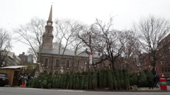 Christmas Trees For Sale on Sidewalk near Church in New York City - stock footage