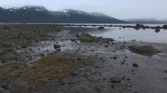 Alaska Shoreline Low Tide Haines - stock footage