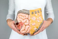Woman holding model of human intestines in front of body - stock photo