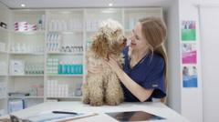 4K Portrait of smiling veterinarian with cute dog in clinic Stock Footage