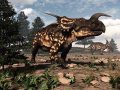 Einiosaurus dinosaurs in the desert - 3D render Stock Illustration