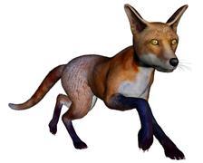 Fox running - 3D render Piirros