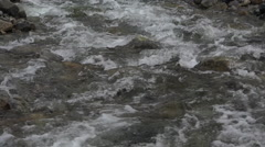 Swift Current River Rapids Slow Motion Tilt - stock footage