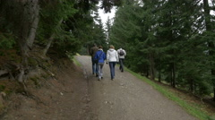 Tourists walking on a road, heading to the Horses Waterfall Stock Footage