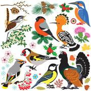 Set of birds Stock Illustration