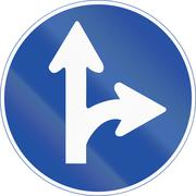 Stock Illustration of South Korean mandatory direction sign - Go right or straight