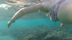 Woman snorkeling above shallow reef in clear Red Sea water Egypt - stock footage
