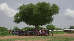 South Sudan - villagers under big tree - stock footage