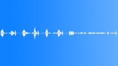 Bathroom Door Squeaks 01.wav Sound Effect