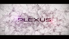 Stock After Effects of Epic Plexus Titles