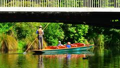 Punting on the Avon river Christchurch - New Zealand - stock photo
