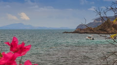 View of boat in sea against hill with pink flower on foreground Stock Footage