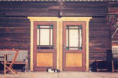 Vintage toned photo of a cat in front of wooden house - stock photo