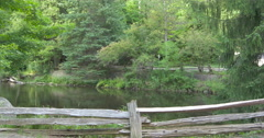 Lake view at Belfountain, Canada Stock Footage