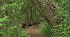 Forest path leading to a wooden bridge at Belfountain, Canada Stock Footage