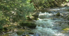 Peaceful river flowing over rocks at Belfountain, Canada Stock Footage