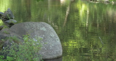 View of a big stone and calm waves in the lake at Belfountain, Canada Stock Footage
