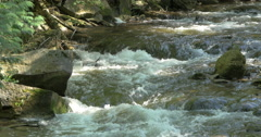 Close up of the river flowing at Belfountain, Canada Stock Footage
