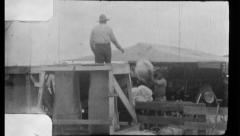 Picking Cotton Wool Bales Field Vintage Sharecropper 1930s Film Home Movie 8788 Stock Footage