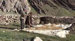 Farmer drying harvest in sun. Stock Footage