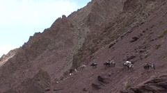 Farmers walking with ponys in valley. Stock Footage