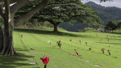 Punchbowl cemetery at Honolulu Stock Footage