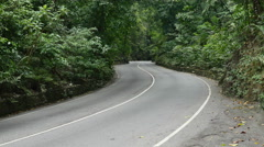 Auto traffic on narrow two-lane road in Fern Gully rain forest, Jamaica Stock Footage