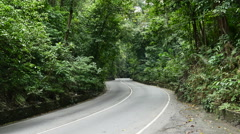 P1060384-Tilt up- two lane road to tree canopy in Fern Gully rain forest, Jam Stock Footage
