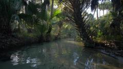 Paradise on a Tropical River Stock Footage