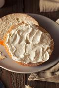 Homemade Plain Egg Bagels - stock photo