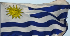 4k Uruguay flag is fluttering in wind. Stock Footage