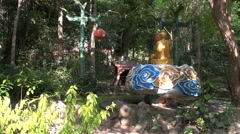 Secluded Chinese Shrine Stock Footage