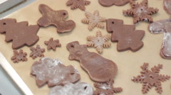Gingerbread reindeer cookies Stock Footage