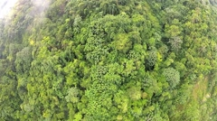 Aerial view to the tropical forest in Puerto Plata, Dominican Republic. Stock Footage